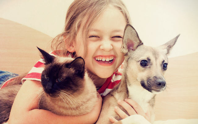 Care for Adopted Pet