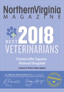 2018 best veterinarians