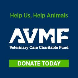 avmf charity