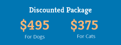playful paws dogs and cats discount